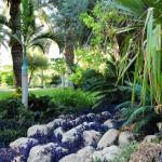 ein_gedi_botanic_garden4